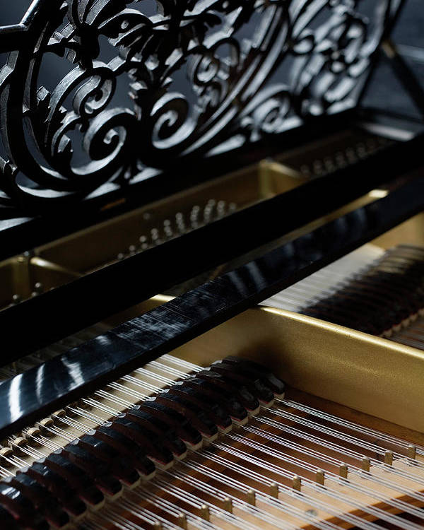 Vertical Poster featuring the photograph The Inside Of A Piano by Studio Blond