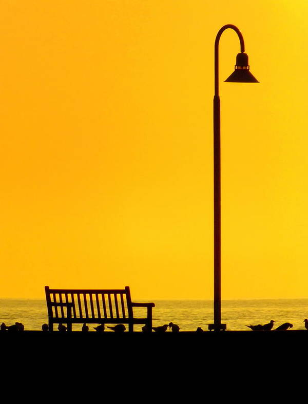 Landscapes Poster featuring the photograph The Long Wait by Karen Wiles