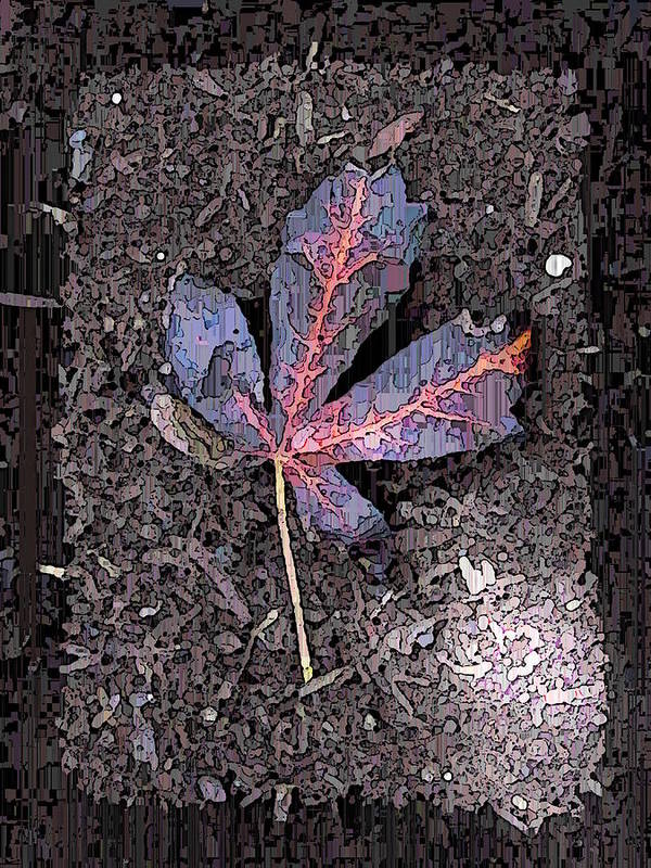 Maple Poster featuring the digital art The Maple 5 by Tim Allen