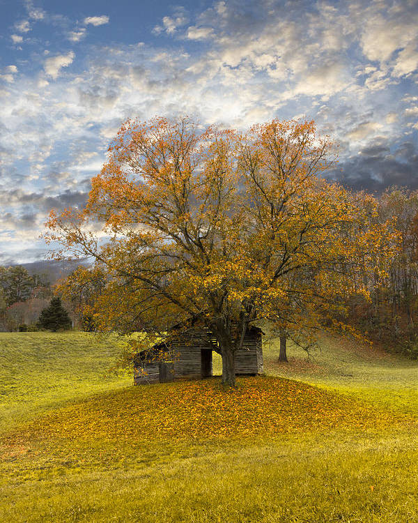 Appalachia Poster featuring the photograph The Old Oak Tree by Debra and Dave Vanderlaan