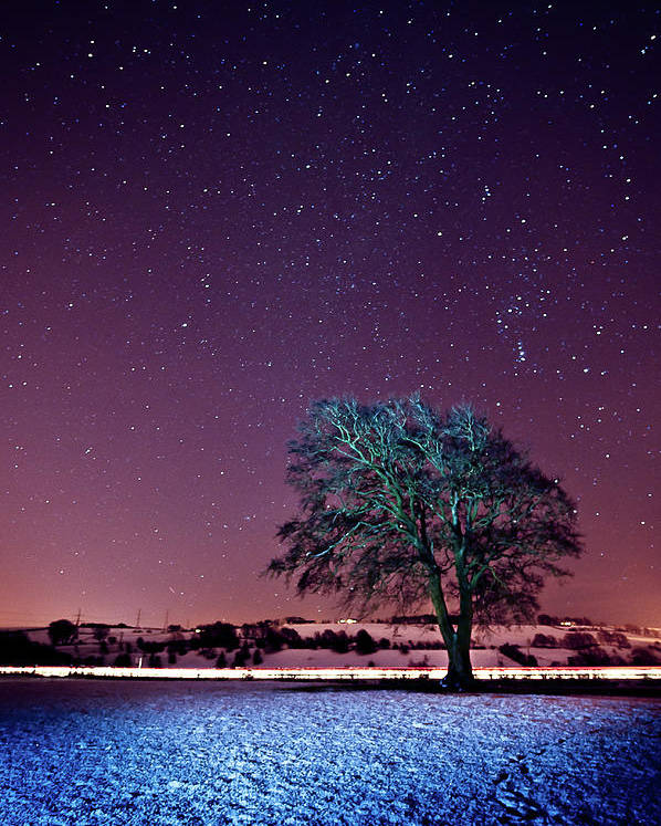 Vertical Poster featuring the photograph Tree Snow And Stars by Paul McGee