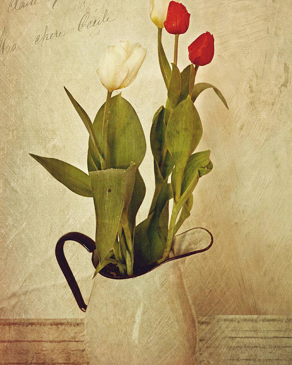 Tulips Poster featuring the photograph Tulips by Kathy Jennings