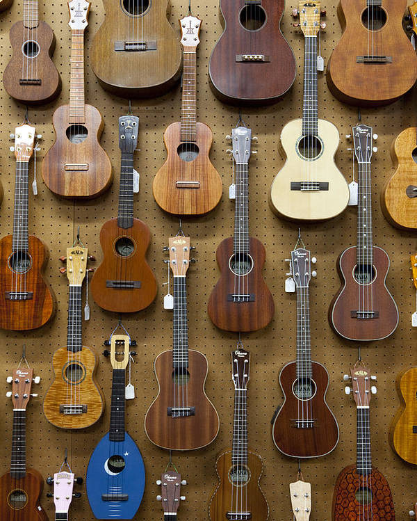 Vertical Poster featuring the photograph Various Guitars & Ukuleles Hanging From Wall by Lisa Romerein