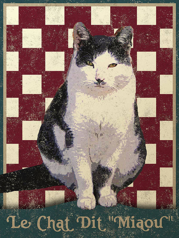 Vintage Cat Poster featuring the digital art Vintage French Bistro Cat by Flo Karp