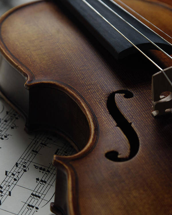 Vertical Poster featuring the photograph Violin by Nichola Evans