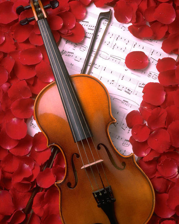 Violin Poster featuring the photograph Violin On Sheet Music With Rose Petals by Garry Gay