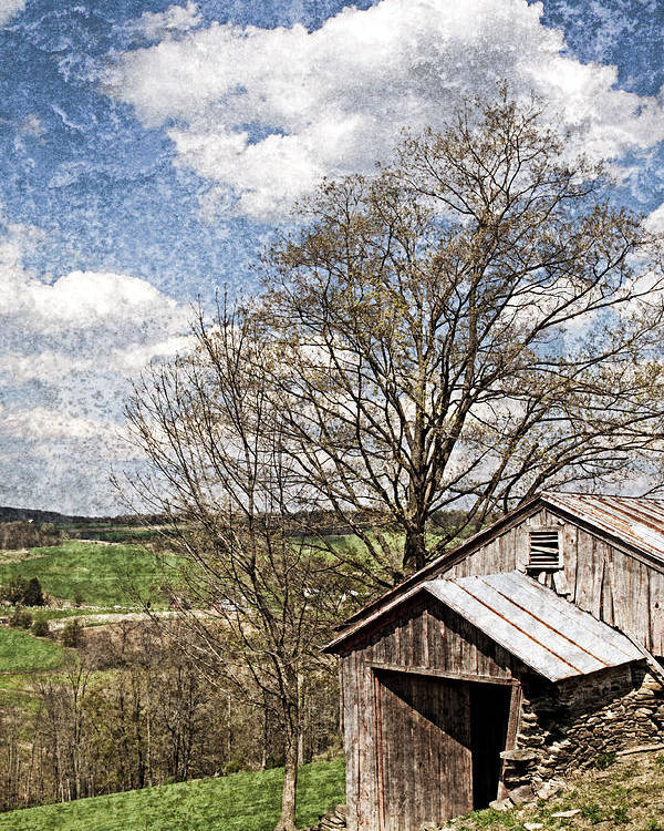 Tin Poster featuring the photograph Weathered Hillside Barn Spring by John Stephens