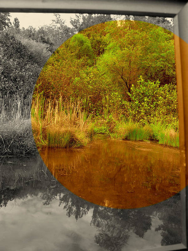 Lanscape Poster featuring the photograph Wide View Focus by Eyefool Photos Brett Klersfeld