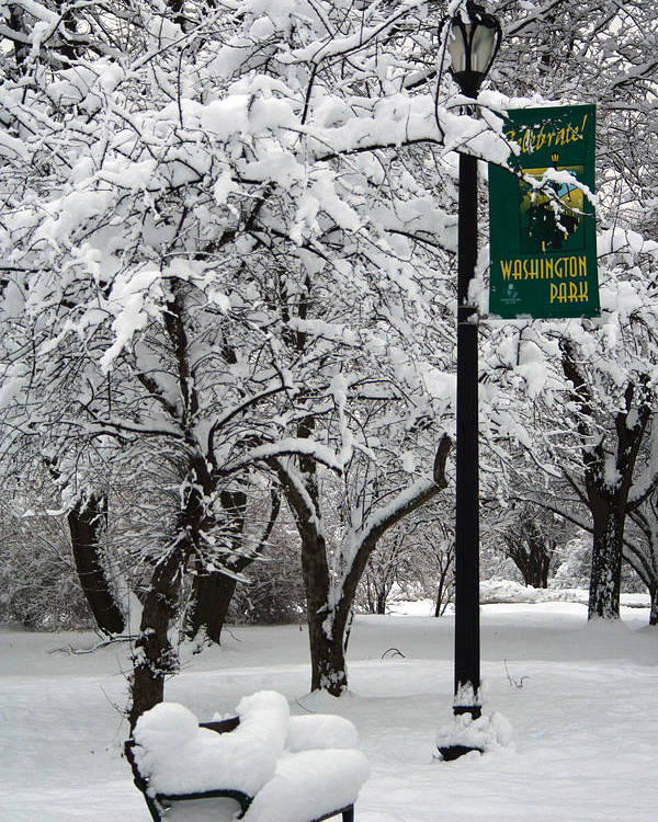 Winter Poster featuring the photograph Winter 0003 by Carol Ann Thomas