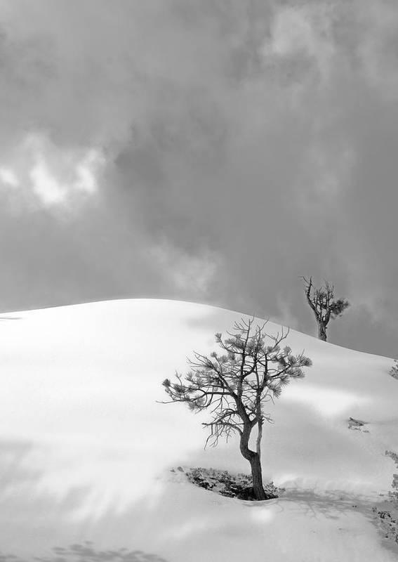 Winter Solitude Poster featuring the photograph Winter Solitude by Viktor Savchenko