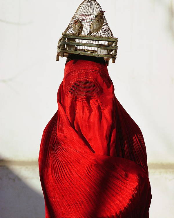 Color Image Poster featuring the photograph Woman Draped In Red Chadri Carries by Thomas J Abercrombie