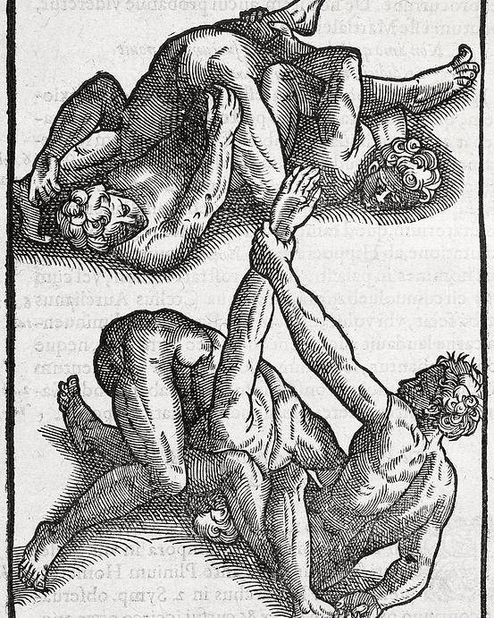 Human Poster featuring the photograph Wrestling Moves, 16th Century Artwork by Middle Temple Library