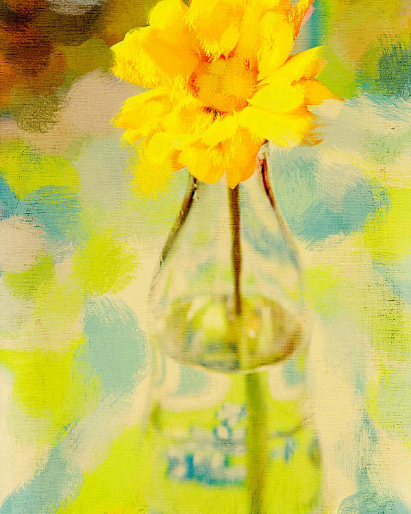 Flower Poster featuring the photograph Yellow Flower by Toni Hopper
