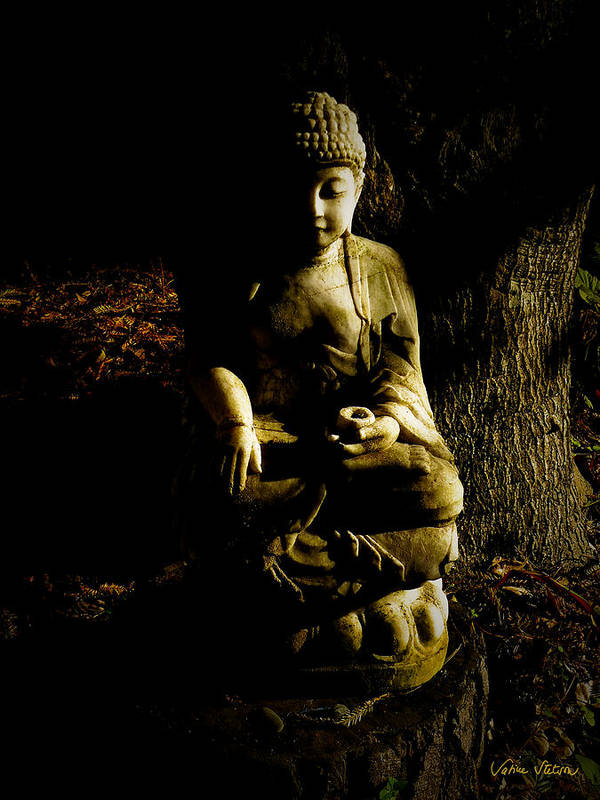 Buddha Poster featuring the photograph Seeing The Light by Sabine Stetson