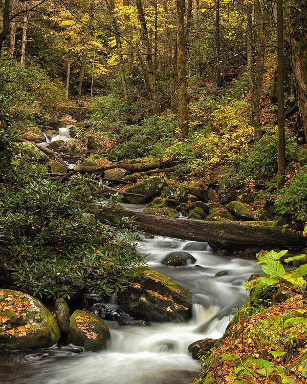 Rapids Poster featuring the photograph Autumn Stream by Andrew Soundarajan
