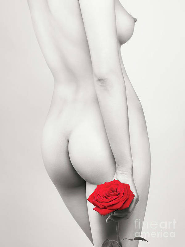 Nude Poster featuring the photograph Beautiful Naked Woman With A Rose by Oleksiy Maksymenko