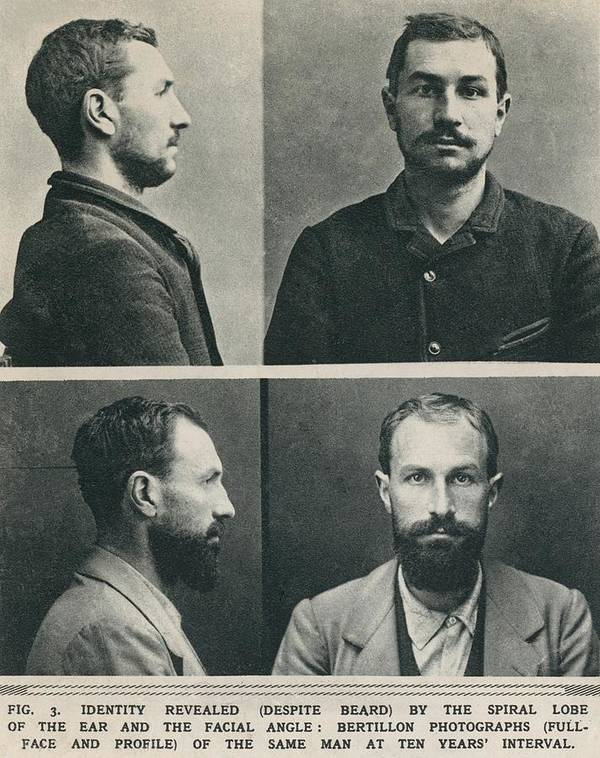 History Poster featuring the photograph Bertillon System Photographs Taken by Everett