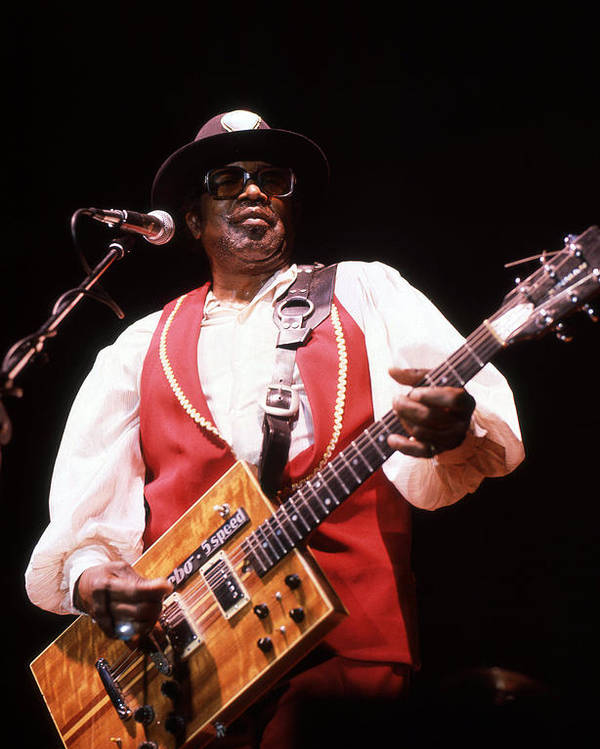 Bo Diddley Rock n Roll Classic Concert Poster Print New