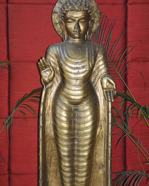 Buddha Poster featuring the photograph Buddha 1 by Vijay Sharon Govender