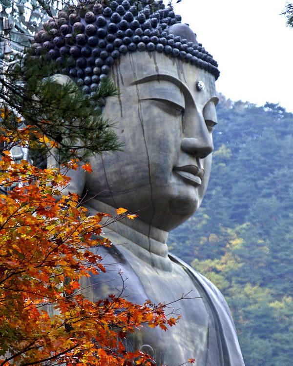 Buddha Poster featuring the photograph Buddha in Autumn by Michele Burgess