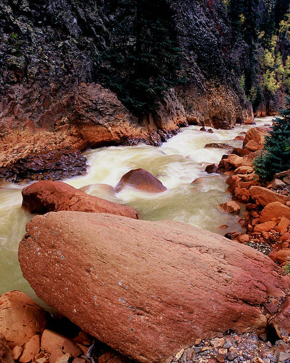 Landscapes Poster featuring the photograph Canyon Creek Ouray Colorado by Tom Fant