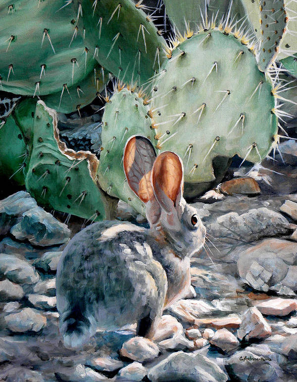 Desert Poster featuring the painting Cottontail Sunrise by Carole Andreen-Harris
