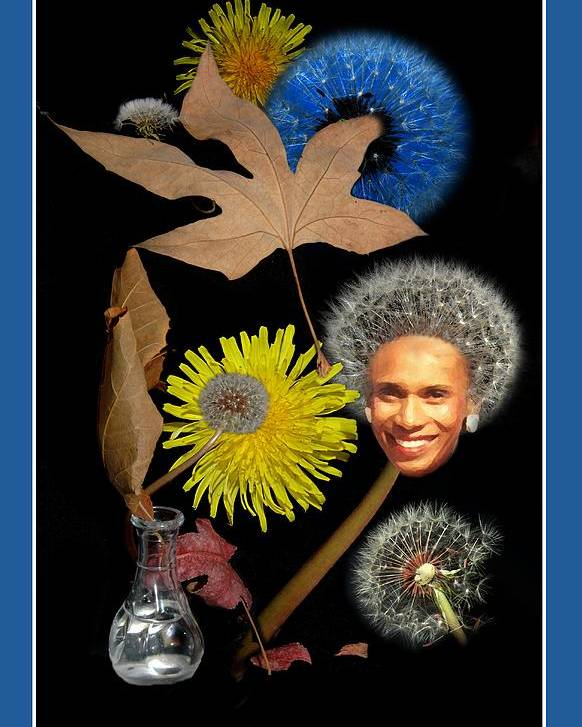 Flowers Poster featuring the photograph Dandy Variations by Richard Gordon