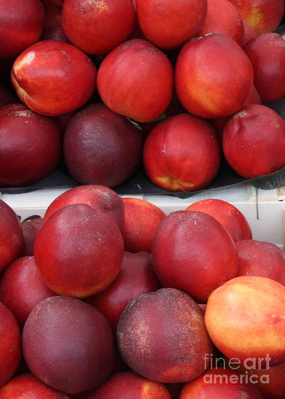 Nectarines Poster featuring the photograph European Markets - Nectarines by Carol Groenen