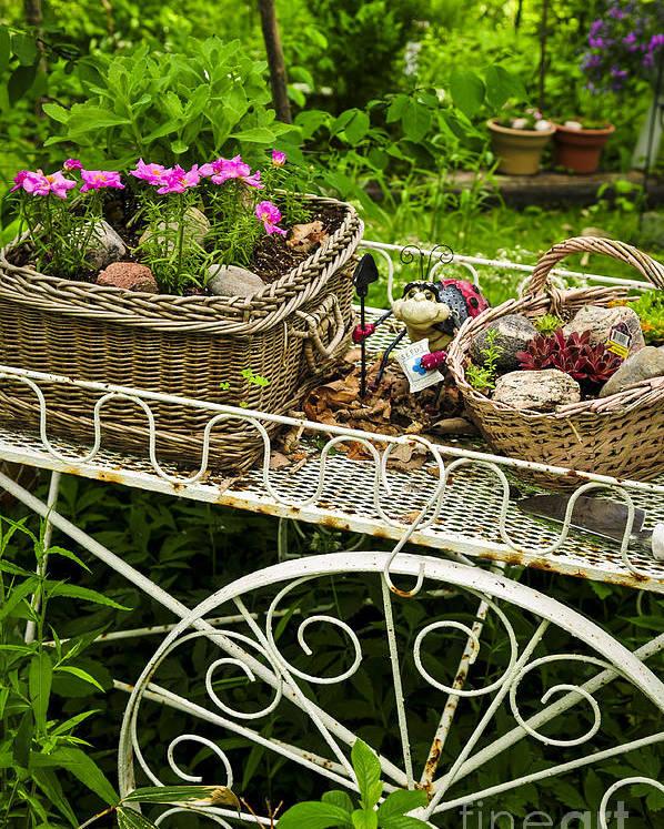 Garden Poster featuring the photograph Flower Cart In Garden by Elena Elisseeva