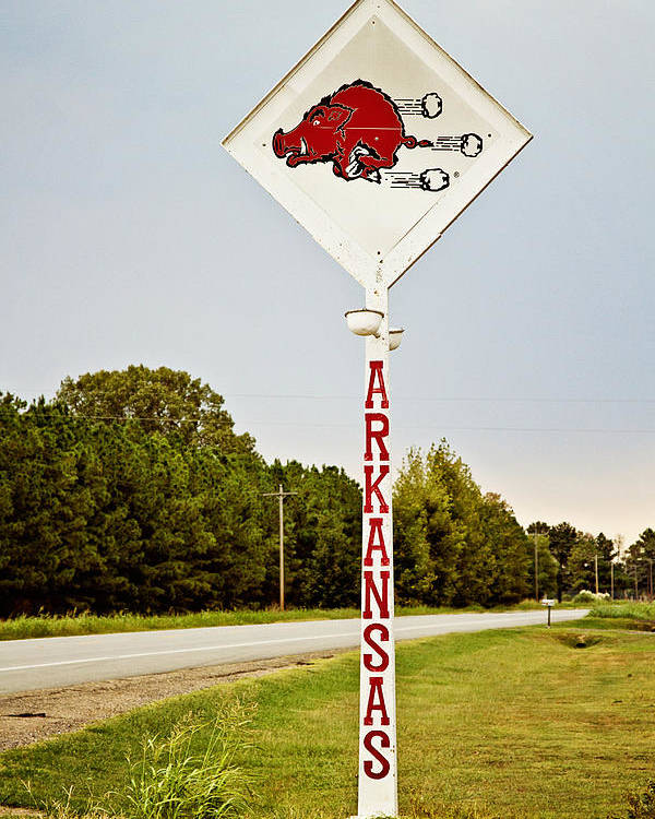 Razorback Poster featuring the photograph Hog Sign by Scott Pellegrin