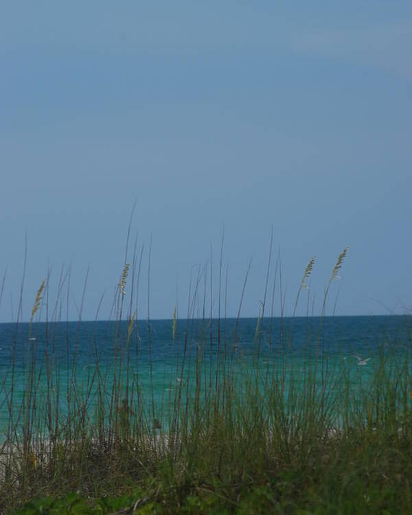 Landscape Poster featuring the photograph Holmes Beach Florida 2 by Lisa Gabrius