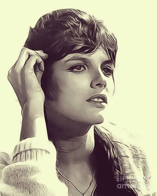 Katharine Poster featuring the digital art Katharine Ross, Vintage Actress by John Springfield