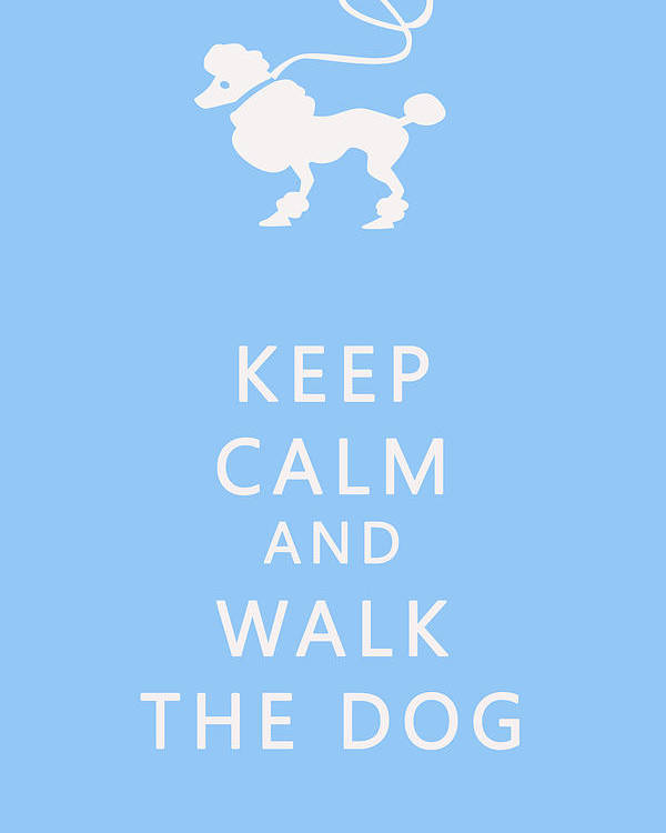 Keep Calm Poster featuring the photograph Keep Calm And Walk The Dog by Georgia Fowler