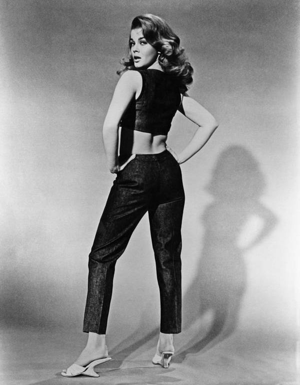 1960s Fashion Poster featuring the photograph Kitten With A Whip, Ann-margret, 1964 by Everett