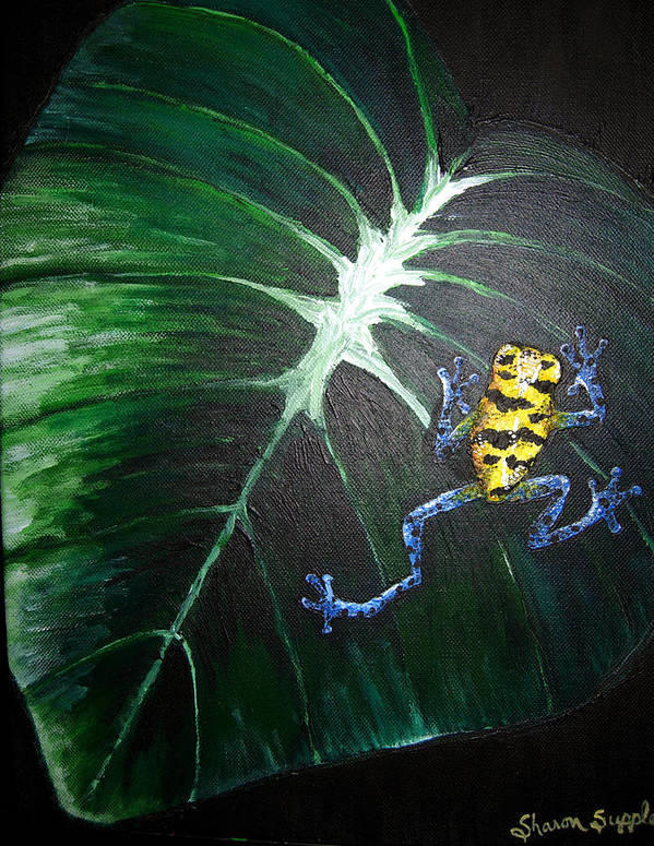 Poison Dart Frog Poster featuring the painting Little Frog In A Big World by Sharon Supplee