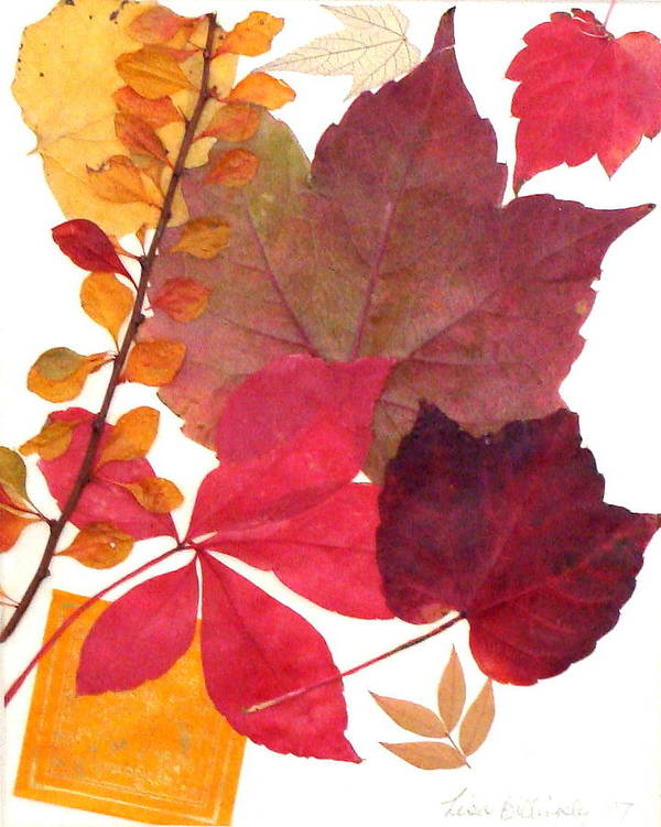 Fall Poster featuring the mixed media My Colors by Lisabeth Billingsley