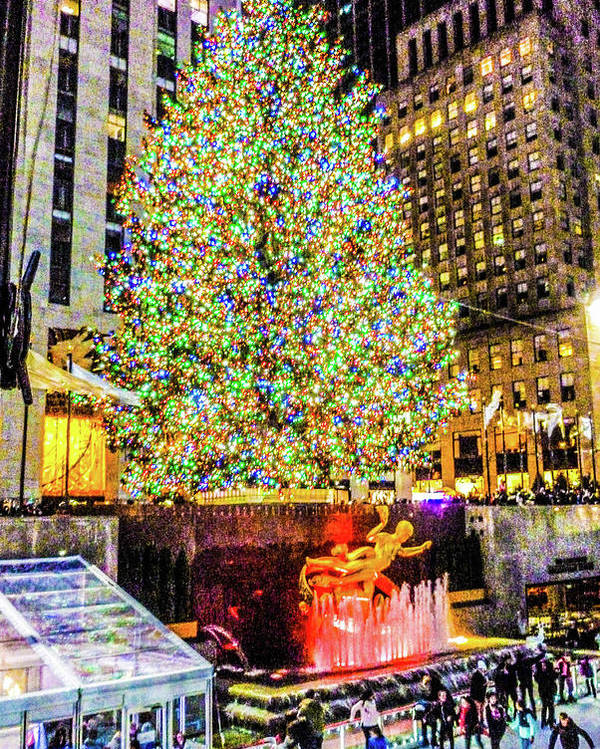 This Is The New York City Christmas Tree At Rockefeller Center Poster featuring the photograph New York City Christmas Tree by William Rogers