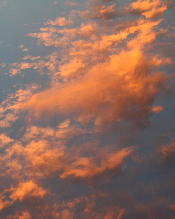Sky Poster featuring the photograph Orange Sky by Brande Barrett