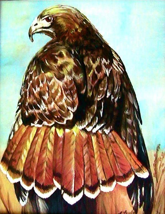 Painting Poster featuring the painting Red Tailed Hawk by L Lauter