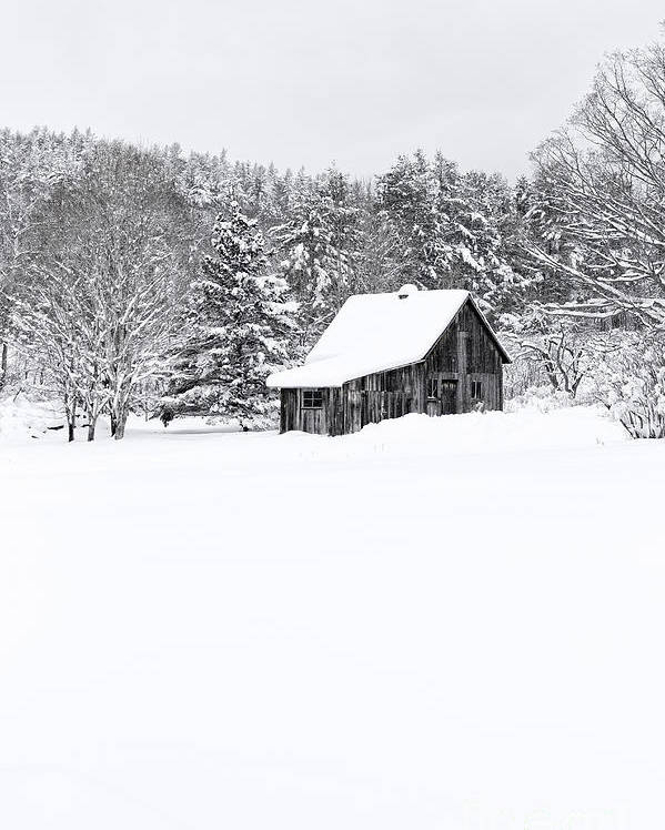 New Hampshire Poster featuring the photograph Remote Cabin In Winter by Edward Fielding