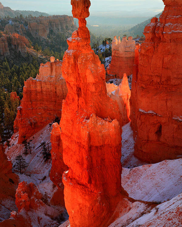 Bryce Poster featuring the photograph Thor's Hammer In Bryce Canyon by Pierre Leclerc Photography