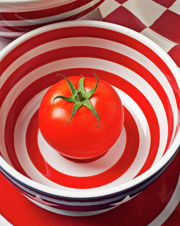 Tomato Poster featuring the photograph Tomato In Red And White Bowl by Garry Gay