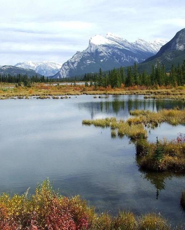 Banff National Park Poster featuring the photograph Vermillion Lakes by Tiffany Vest