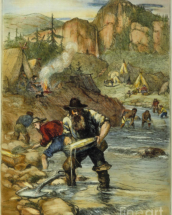 1850s Poster featuring the photograph California Gold Rush by Granger