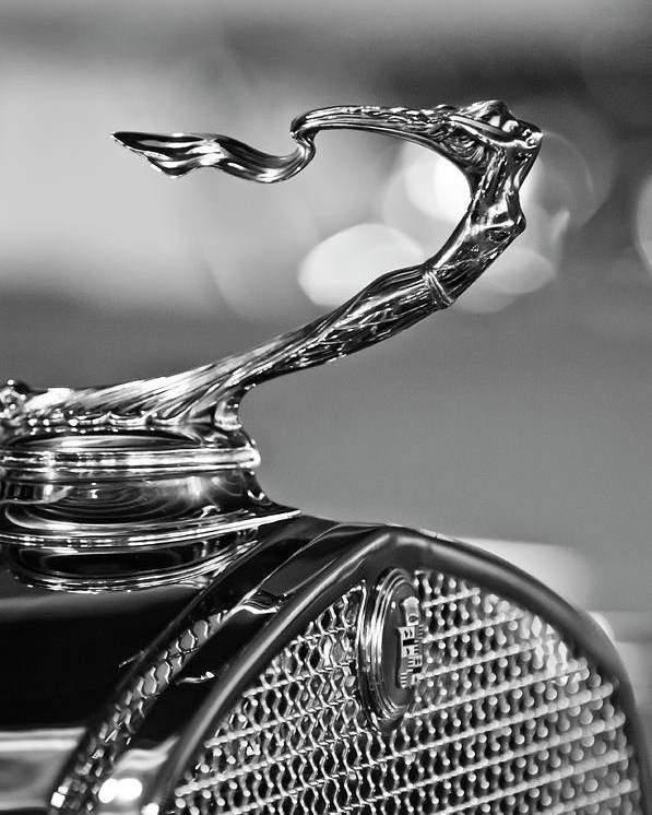 1930 Cadillac Roadster Poster featuring the photograph 1930 Cadillac Roadster Hood Ornament 2 by Jill Reger