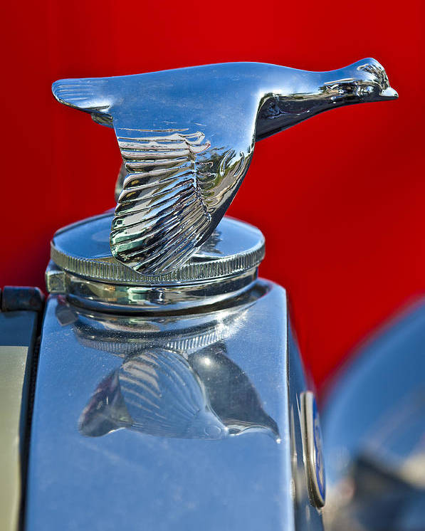 1931 Ford Model A Quail Poster featuring the photograph 1931 Ford Model A Quail Hood Ornament by Jill Reger