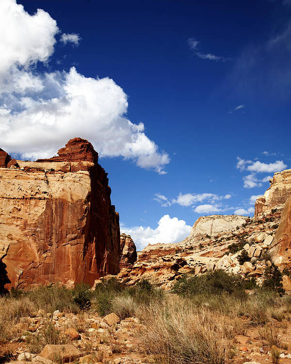 Capitol Reef National Park Poster featuring the photograph Capitol Reef National Park by Mark Smith