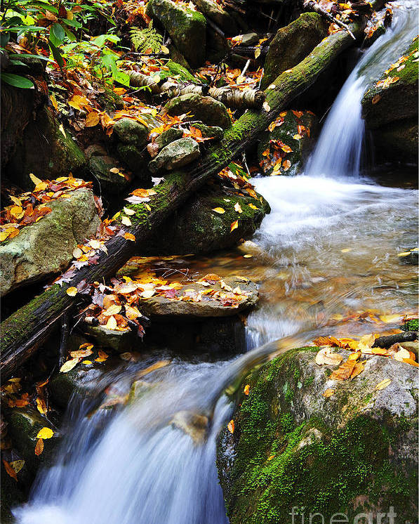 Rushing Mountain Stream Poster featuring the photograph Autumn Mountain Stream by Thomas R Fletcher