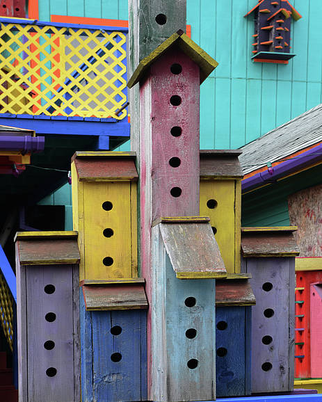 Birdhouse Poster featuring the photograph Birdhouses For Colorful Birds 3 by Bob Christopher