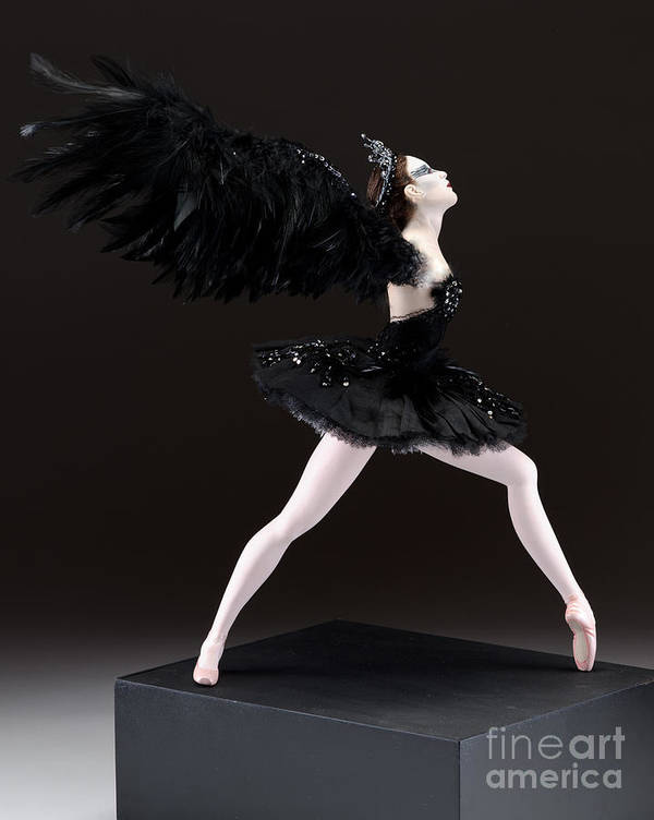 Black Swan Poster featuring the mixed media Black Swan by Vickie Arentz